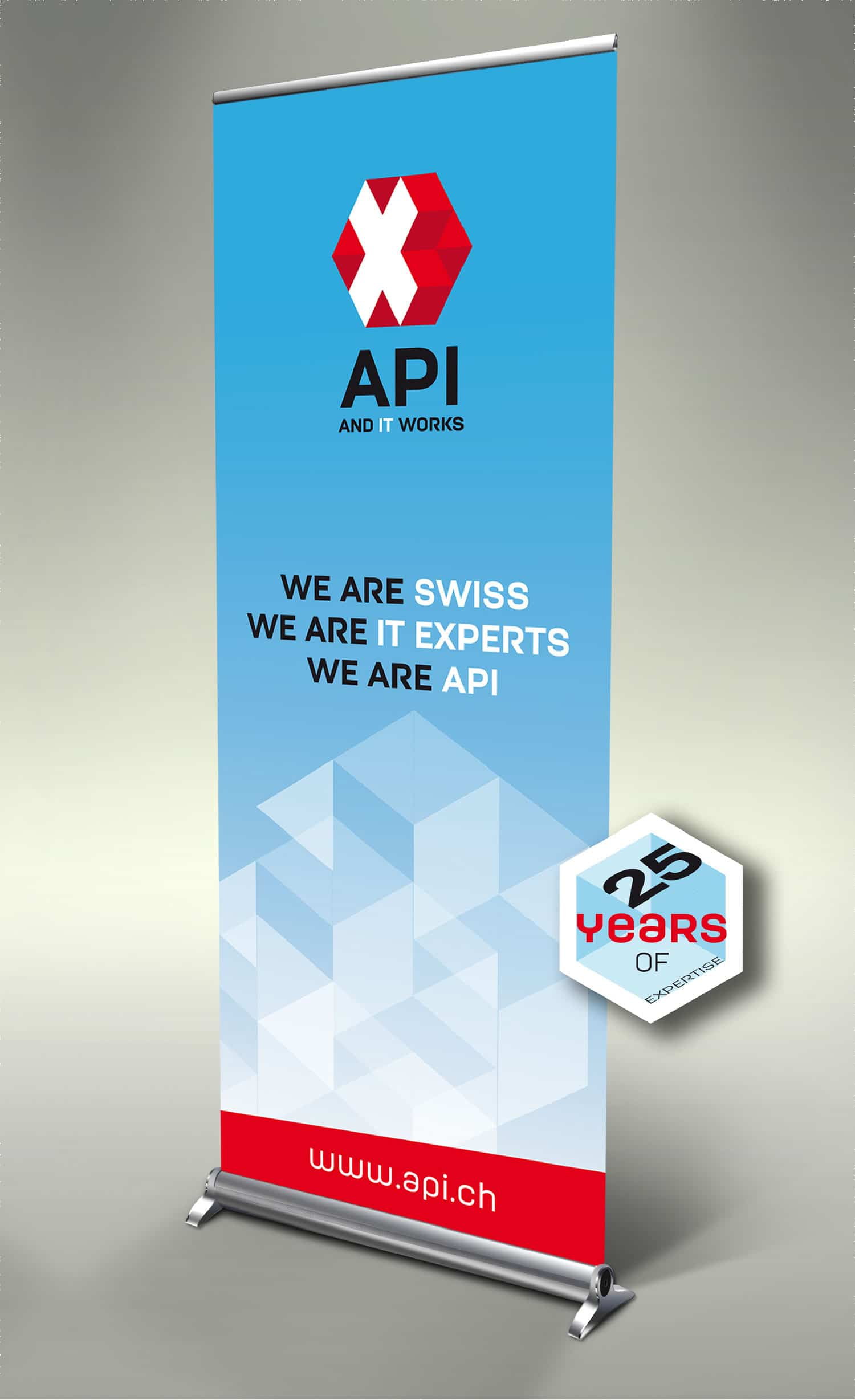 Logo API IT solutions & services – Roll up